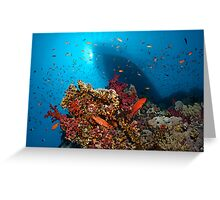 Divers Heaven Greeting Card