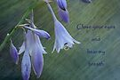 Hosta Card by Eileen McVey