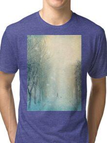 Evening Stroll Tri-blend T-Shirt