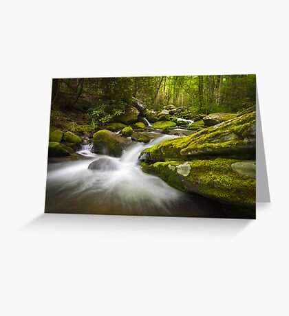 Great Smoky Mountains Gatlinburg TN Roaring Fork - Gift of Life Greeting Card