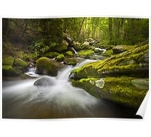 Great Smoky Mountains Gatlinburg TN Roaring Fork - Gift of Life Poster