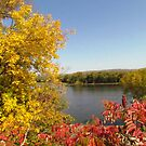 Mississippi River Colors by lorilee