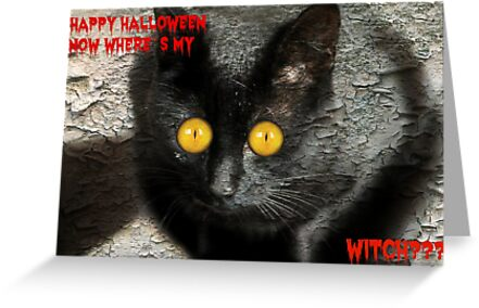 Happy Halloween Now Where`s My Witch? by Ladymoose