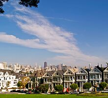 The Painted Ladies of Alamo Square by Alex Cassels