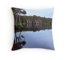 Lake Ainsworth, early morning, No 3 Throw Pillow