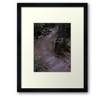 Old Board Path Framed Print