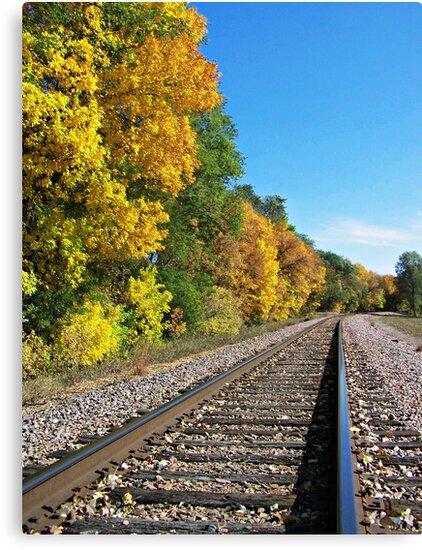Scenic Railway by Greg Belfrage