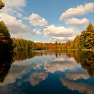 Fall Reflections in the Black Lake by Scott  Hafer