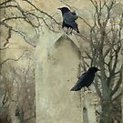 Crows At The Graveyard by gothicolors