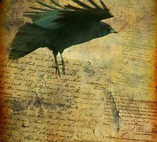 Vintage Crow by gothicolors