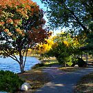 Autumn Colors in the Japanese Gardens by Scott Hendricks