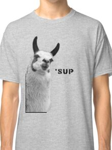Cool Llama is Cool Classic T-Shirt