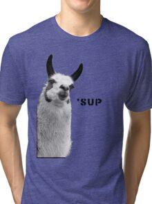 Cool Llama is Cool Tri-blend T-Shirt