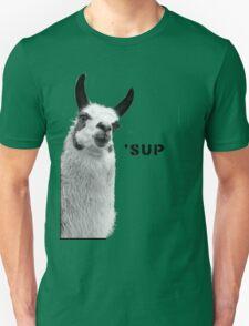 Cool Llama is Cool T-Shirt