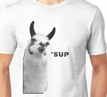 Cool Llama is Cool Unisex T-Shirt
