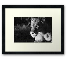 Cold Morning Walk Framed Print