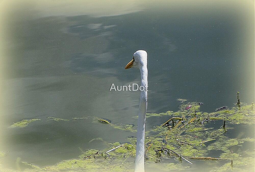 The Longest Neck by AuntDot