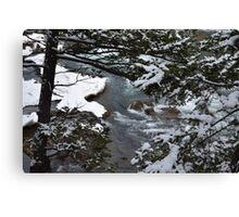 Bow River Falls Winter Canvas Print