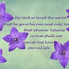 John 3:16 Greeting Card by Susan S. Kline