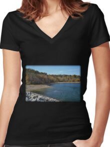 Eye Picnic Women's Fitted V-Neck T-Shirt