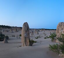 Pinnacles Panorama 2 by gcdepiazzi