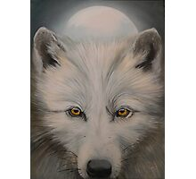 White wolf portrait Photographic Print