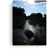 Dark and Shining Waters Canvas Print