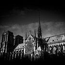 Travel BW - Paris Notre Dame by lesslinear