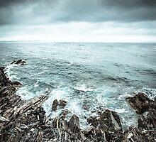 The Edge by Andrew Schweitzer