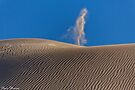 Naked Man by Pene Stevens