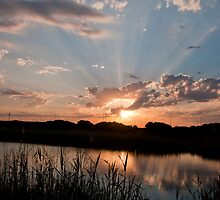 God Rays in the wetlands by Tamarama72