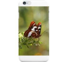 Lorquin's Admiral Butterfly iPhone Case/Skin