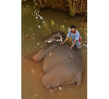 washing the elefant Photographic Print
