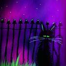 black cat magic halloween Tia Knight by Tia Knight