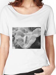 Sea Creature Women's Relaxed Fit T-Shirt