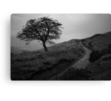 Tree, Win Hill Canvas Print