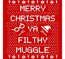 Potter Muggle Quotes Photographic Print