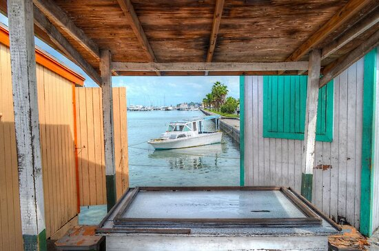 The Domino Table at Potter's Cay in Nassau, The Bahamas by 242Digital