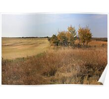 Alberta Prairie Fields in Autumn Poster