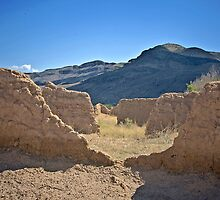 Melting Adobe Walls at Fort Seldon by David DeWitt