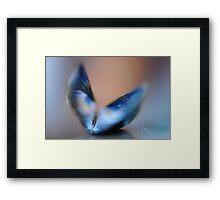 Feline Wings Framed Print