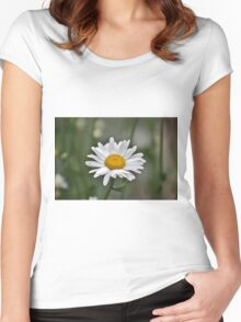 Single white daisy Women's Fitted Scoop T-Shirt