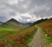The Lake District: Path to Scarth Gap by Rob Parsons