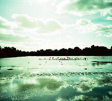 Mercury Days by Colin Gardiner