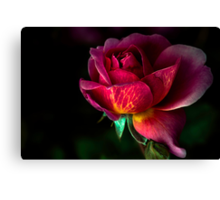 On a day like today, your beauty is even more breathtaking  Canvas Print