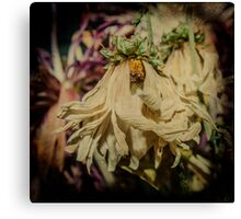 Wilting Away Canvas Print