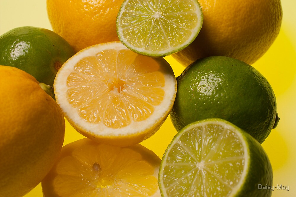 Lemon n Lime - study of fruit cross section by Daisy-May