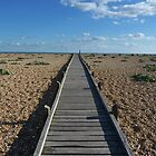 boardwalk to nowhere by lukasdf