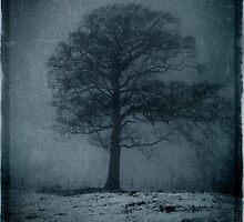 Wintree II by David Atkinson
