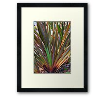 Rainbow Grass Framed Print